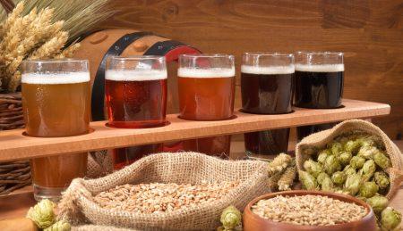 Biertrger mit Bierglsern